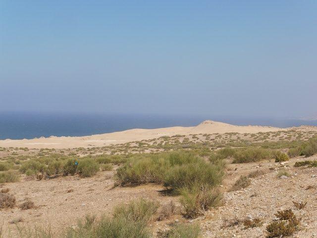 Sanddünen hinter Tamri